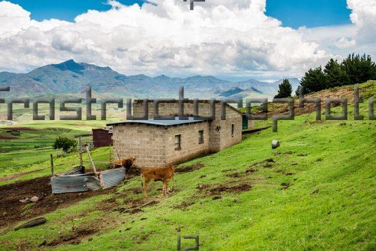 Rural Lesotho home