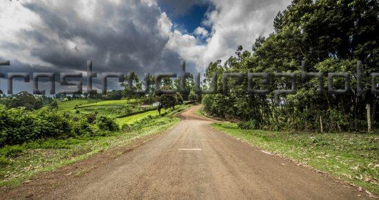 Kenya Tea Plantations