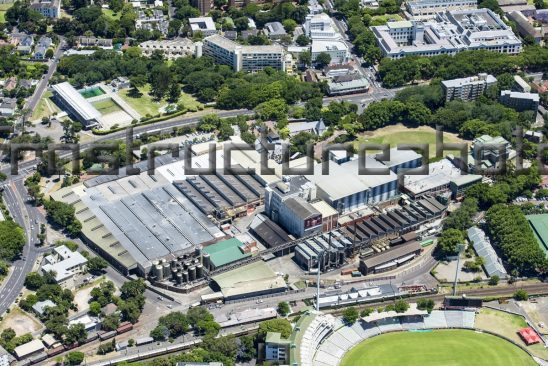 South African Breweries Newlands